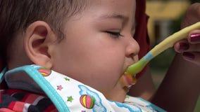 Baby Eating, Infant Feeding stock video