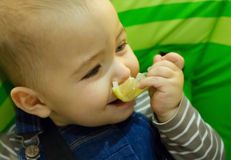 Baby eating lemon on green background Royalty Free Stock Photos