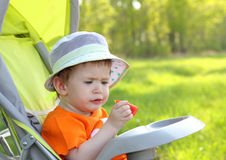 Baby eating outdoor Stock Photography