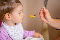 Baby eating puree from a spoon in the hand of Stock Image