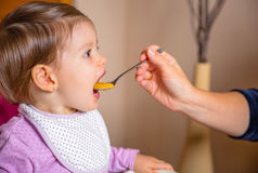 Baby eating puree from a spoon in the hand of Stock Images