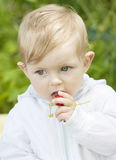 Baby eating strawberry Stock Photo