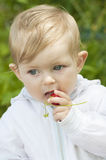 Baby eating strawberry Royalty Free Stock Photography