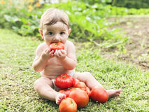 Baby eating tomato Royalty Free Stock Photography