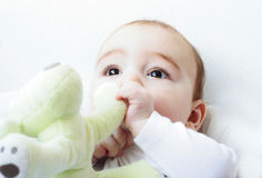 Baby eating a toy Stock Photo