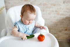 Baby eating vegetables. green cucumber in little girl hand in sunny kitchen. Healthy nutrition for kids. Snack or breakfast for royalty free stock image