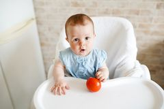 Baby eating vegetables. red tomato in little girl hand in sunny kitchen. Healthy nutrition for kids. Snack or breakfast for young stock image