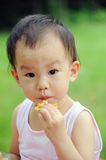 Baby eating  waffle. A chinese baby eating  waffle Royalty Free Stock Photography