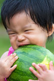 Baby eating watermelon. Little Asian baby eating watermelon in park Royalty Free Stock Photography