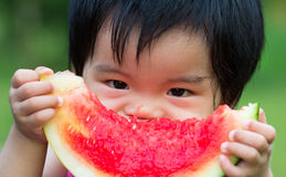 Baby eating watermelon. Little Asian baby eating watermelon in park Stock Photos