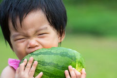 Baby eating watermelon. Little Asian baby eating watermelon in park Royalty Free Stock Image