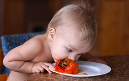 Baby eats fresh ripe persimmon on the white plate Royalty Free Stock Images