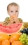 Baby eats fruit on a white background Royalty Free Stock Images