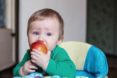 Baby eats red apple Stock Photography