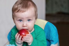 Baby eats red apple Stock Image