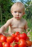 Baby Eats Ripe Tomatoes