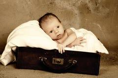 Baby in een koffer Stock Foto
