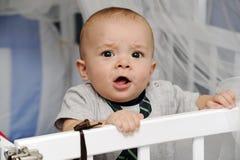 Baby in een voederbak stock foto's