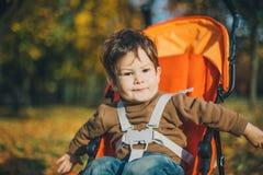 Baby in een wandelwagen in park Stock Fotografie
