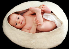 Baby in the egg. Isolate on black background Stock Photo