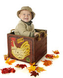 Baby in the Egg Crate. A happy baby boy sitting in a wooden egg crate surrounded by colorful leaves.  On a white background Stock Images