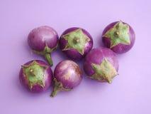 Baby eggplants Stock Photos