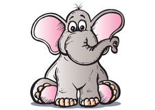 Baby elephant. Sitting alone and wondering whats going on Royalty Free Stock Photos