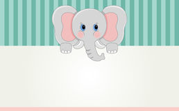 Baby elephant banner Royalty Free Stock Photo