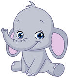 Baby elephant. Illustration of a happy baby elephant