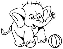 Baby elephant kicking a ball Stock Images