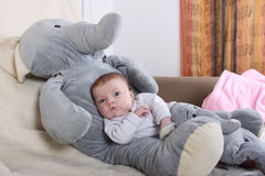 Baby with elephant Royalty Free Stock Photography