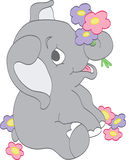 Baby Elephant Picking Flowers Royalty Free Stock Photography