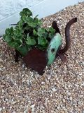 Baby Elephant Plant Container. Plant container made from Iron sheeting. Creative plant holders fro your gardens stock image