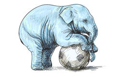 Baby elephant playing football, sketch and free hand draw  Stock Photo