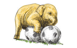 Baby elephant playing football, sketch and free hand draw  Royalty Free Stock Photos
