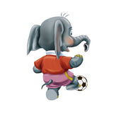 Baby elephant with soccer ball Royalty Free Stock Photography
