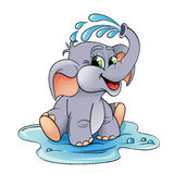 Baby elephant which pours himself with water Royalty Free Stock Photo