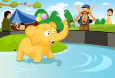 Baby Elephant at the Zoo vector illustration