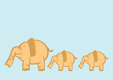 Baby Elephants Following Mother Elephant Stock Photo