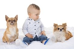 Baby en chihuahua royalty-vrije stock fotografie