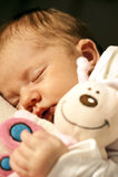 Baby en gevuld dier Stock Foto