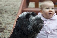 Baby en hond Royalty-vrije Stock Fotografie