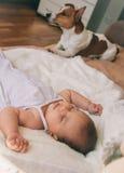 Baby en hond Stock Afbeeldingen