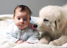 Baby en puppy Stock Foto's