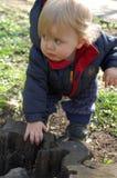Baby en stomp Royalty-vrije Stock Foto's
