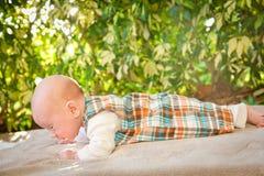 Baby Exercising: Push-ups Royalty Free Stock Images