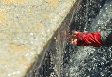 A baby explores a fountain Stock Photos