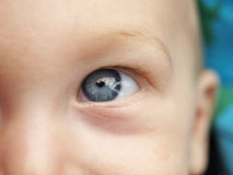 Baby eye. Close up of a baby eye royalty free stock images