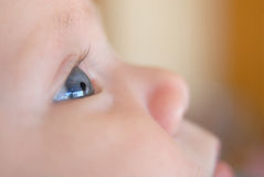 Baby eye close up Royalty Free Stock Images