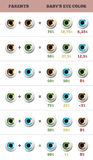 Baby eye color predictor. Likelihood of eyes color of the baby. Appearance of an inherited trait. Stock Photography